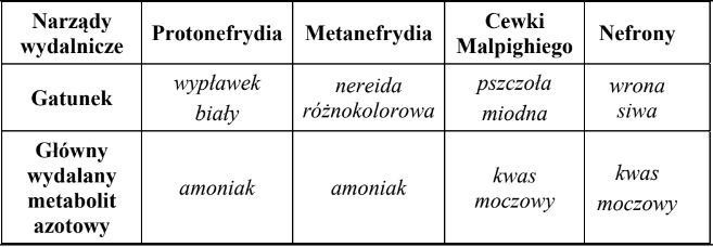 Ami összetéveszthető a nemi szemölcsökkel, Szemölcs vagy fibróma: ezek a legfontosabb különbségek